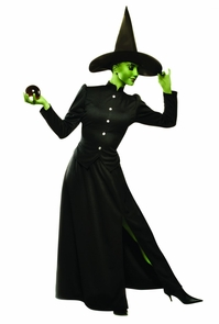 Classic Witch Adult Large Costume