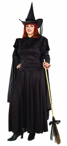 Classic Witch Adult Plus Costume