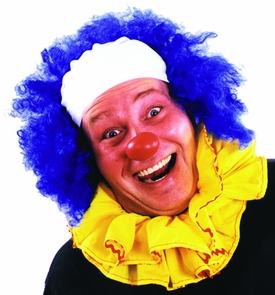 Clown Wig Bald Curly Blue Costume