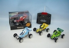 Electric RC (Remote Control) Mini Buggy (2 People Can Race)
