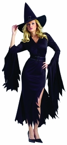 Gothic Witch Adult Md/lg Costume