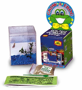 Grow A Frog Planet Kit Lets You Raise A Real Frog W/Habitat Too