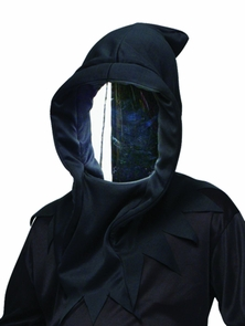 Haunted Mirror Mask Costume