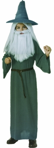 Hobbit Gandalf Child Large Costume