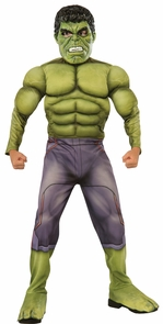 Hulk Child Medium Costume