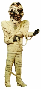 Mummy Costume As Pictured Costume