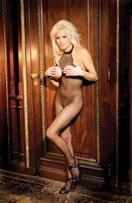 Open Bust/crotch Bodystocking Costume