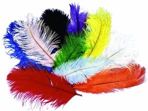 Ostrich Plumes Red Costume