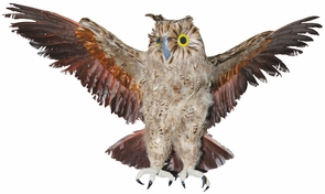 Owl Brown 28 Inch Costume