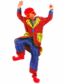 Plaid Pickles Adult Clown Costume