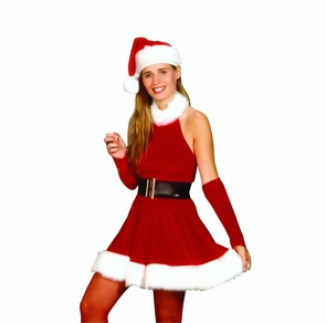 Santa's Inspiration Medium Costume