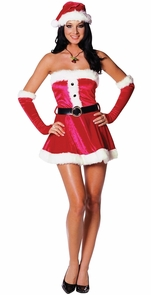 Santa's Sweetie Small Costume