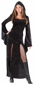 Sultry Sorceress Adult Sm/md Costume