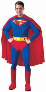 Superman Adult Muscle Dlx Md Costume