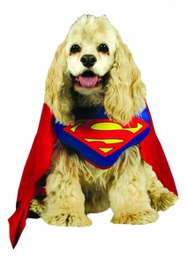 Superman Pet Costume Medium Costume