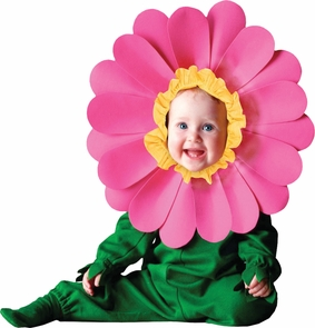 Tom Arma Flower Web 18-24month Costume