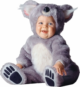 Tom Arma Koala Web 18-24month Costume