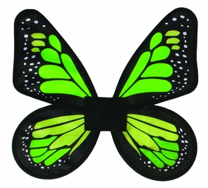 Wings Butterfly Satin Ad Green Costume