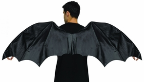 Wings Dragon Adult Costume