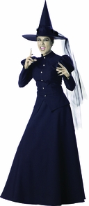 Witch Adult Med Costume