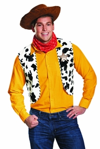 Woody Deluxe Kit Exc - Toy Story Costume