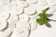 "2 Hole White Buttons 1"" inch (12 pcs)"