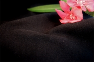 Soft Stretch Woven Fabric Midnight Black 7 yards