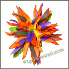 Bird of Paradise Large Hair Clip