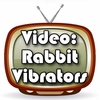 A Quick Video That Shows How A Rabbit Vibrator Moves
