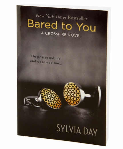 Bared to You - An Erotic Novel