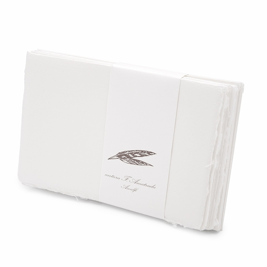 Amalfi Informal Folded Note Cards with Envelopes (8 ct.) (3.5 x 5.25)