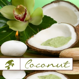 Shop Coconut