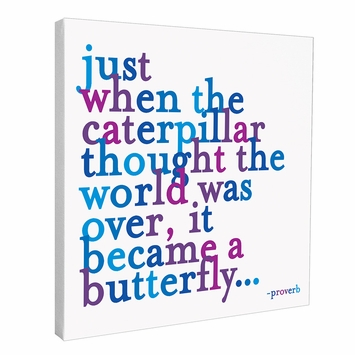 Quotable Cards Butterfly Wall Canvas