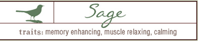 Buy Sage Products