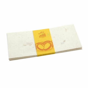Valley Eco Pulp Envelopes (no. 10) in Mango