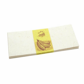 Valley Eco Pulp Envelopes (no. 10) in Banana