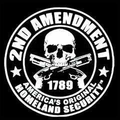 2nd Amendment Homeland Security Men's T-Shirt