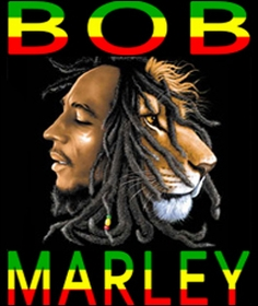 Funny T-Shirts, Confederate Flag Shirts & Offensive Tees ... Respect Hat Marley