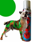 St. Patrick's Day Green Pet Paint Colored Hair Spray