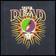 The Grateful Dead Steal Your Lightning Tiedye Mens T-shirt
