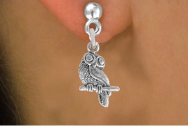 <bR>                 EXCLUSIVELY OURS!!<BR>           AN ALLAN ROBIN DESIGN!! <BR> ABSOLUTIELY LEAD & NICKEL FREE!! <BR>W850SE - DETAILED SILVER TONE <BR>OWL ON BRANCH CHARM EARRINGS <BR>     FROM $4.50 TO $8.35 �2012