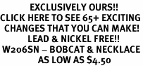 <bR>              EXCLUSIVELY OURS!!<BR>CLICK HERE TO SEE 65+ EXCITING<BR>  CHANGES THAT YOU CAN MAKE!<BR>             LEAD & NICKEL FREE!!<BR> W206SN - BOBCAT & NECKLACE<br>                  AS LOW AS $4.50