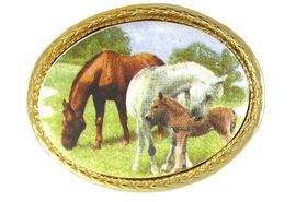 "<BR>                   EXCLUSIVELY OURS!!!<Br>      W11741P - OVAL ""HORSE FAMILY""<Br>GOLD TONE TRIM PIN AS LOW AS $5.60"
