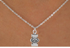 <Br>                LEAD & NICKEL FREE!!<Br>          STERLING SILVER PLATED!!<bR>  W12826N - LICENSED UNIVERSITY<Br>         OF IOWA HAWKEYES LOGO &<Br>MASCOT NECKLACE AS LOW AS $3.65