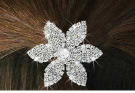 """<Br>             LEAD & NICKEL FREE!!<br> W16567HJ - GENUINE AUSTRIAN<Br>CRYSTAL COVERED """"POINSETTIA"""" <Br>         PONYTAIL HOLDER FROM<BR>                    $7.31 TO $16.25"""