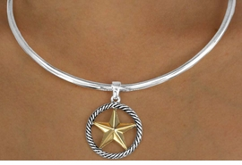 """W11522NE - TWO-TONE """"LONE STAR""""<Br>   COLLAR NECKLACE & EARRING SET<Br>                       AS LOW AS $5.20"""