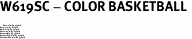 """W619SC - COLOR BASKETBALL <BR> <FONT size=""""2"""">Buy 1-2 for $4.05 Each<br>Buy 3-5 for $3.65 Each<br>Buy 6-11 for $3.55 Each<br>Buy 12-23 for $3.45 Each<br>Buy 24-49 for $3.35 Each<br>Buy 50 or More for $3.25 Each<br>Buy 100 or More for $2.35 Each</font>"""