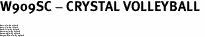 "W909SC - CRYSTAL VOLLEYBALL <BR><FONT size=""2"">Buy 1-2 for $4.25 Each<br>Buy 3-5 for $4.15 Each<br>Buy 6-11 for $3.65 Each<br>Buy 12-23 for $3.45 Each<br>Buy 24-49 for $3.25 Each<br>Buy 50 or More for $3.09 Each</font>"