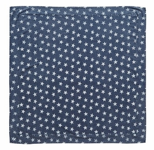Attractive Patterned Multi Star Navy Table Cloth by VHC Brands