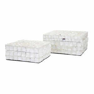Barbuda Shell Boxes - Set Of 2